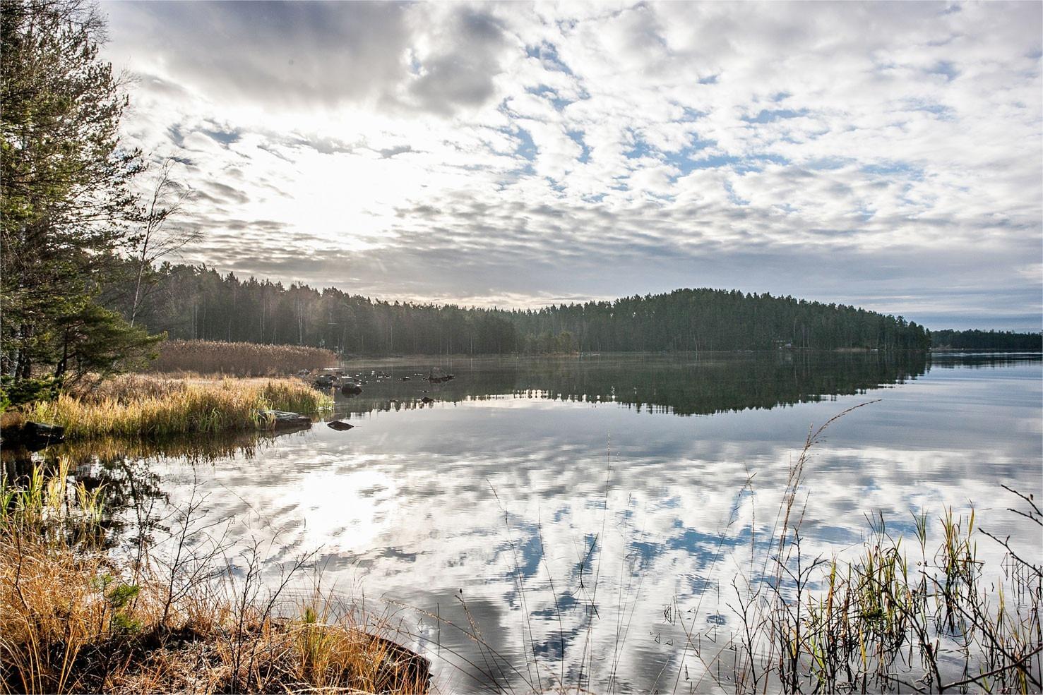 Fastighetsmäklare i Falun